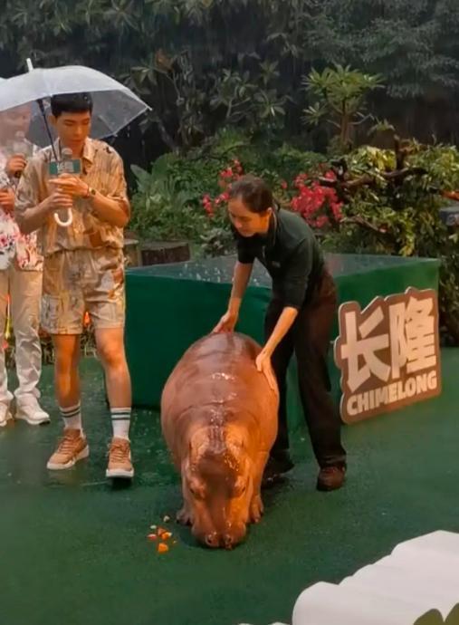 """""""雨神""""本神!萧敬腾在广州参加活动下大雨引热议"""
