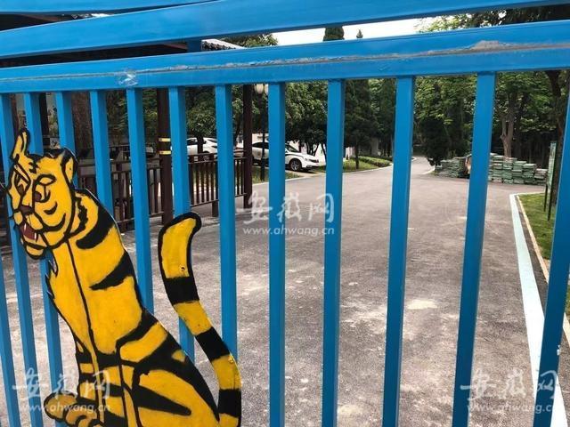 悲剧!安徽蚌埠市一饲养员被老虎袭击,不幸身亡