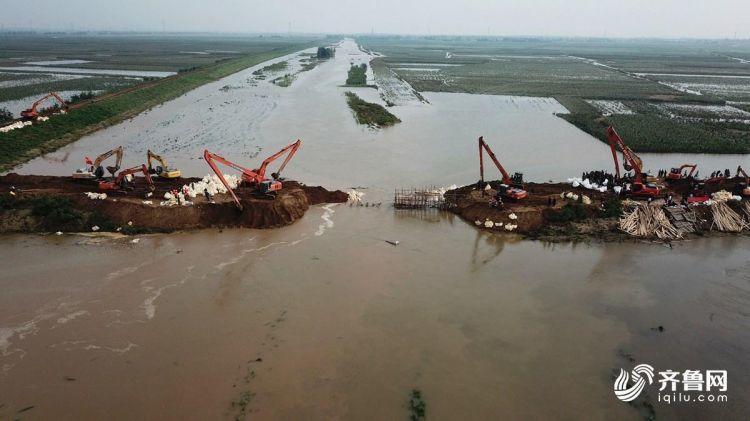 多台重型机械合力作业!航拍寿光弥河堤坝修复实况