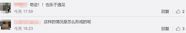内蒙古情人节出现幻日奇观,网友:五星出东方
