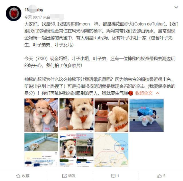 宋慧乔方否认与玄彬复合 ,遛狗视频男生身份曝光,不是玄彬?