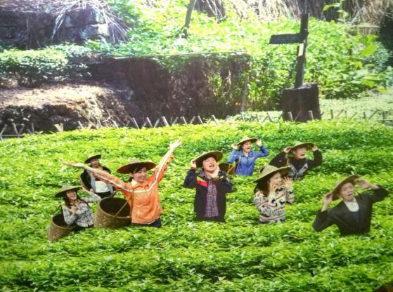 全福之旅,人文南平:柳永故里打个卡