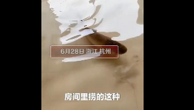 真湖景房!南方多地连续强降雨,杭州千岛湖一家人在房间里抓鱼