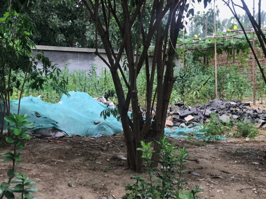 【啄木鸟在行动】清源路潍坊路路口西100米附近有渣土未覆盖