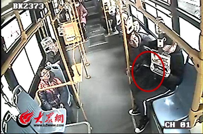"""青岛一男子带宠物狗上公交 被拒载称""""不退钱不下车"""""""