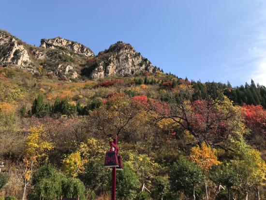 秋日赏枫新去处 济南青铜山大峡谷风景区