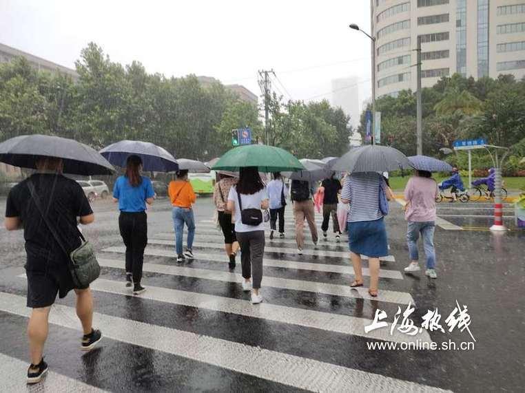 没湿服谁!上海狂风后降暴雨沪白