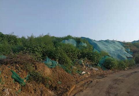 【啄木鸟在行动】京台高速与北园高架路交叉口西南侧部分渣土裸露