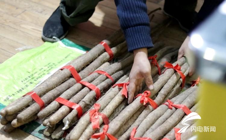 济南4岁男孩患白血病,为筹款11岁姐姐上街卖山药