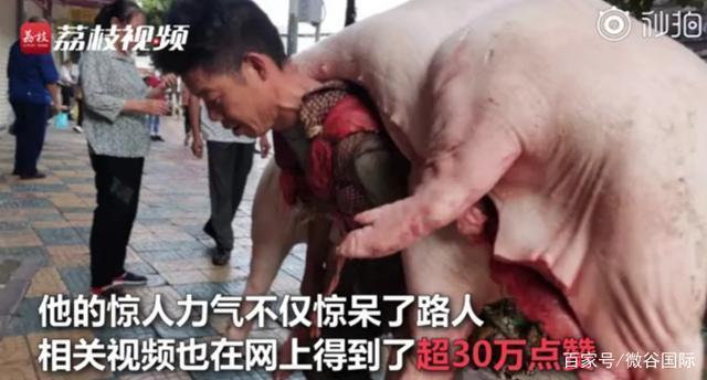 走红!贵阳背肉汉回应背480斤猪肉贵阳背肉汉回应背480斤猪肉