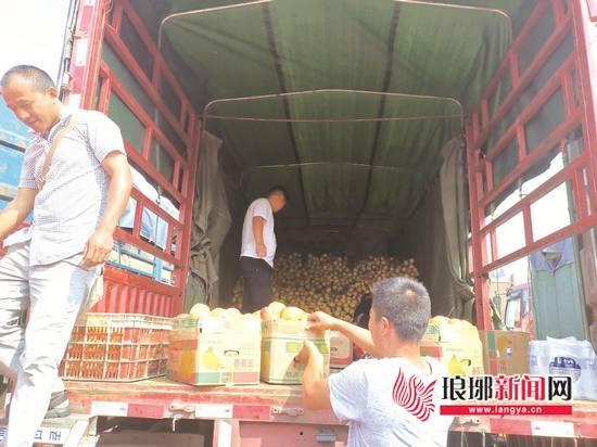 石榴上市一个月 临沂一批發市场买卖量达5659.4吨