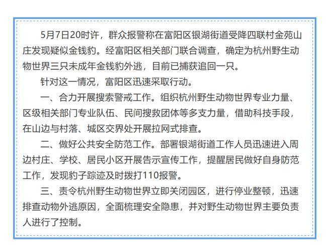豹子去哪兒了?杭州野生動物世界3隻金錢豹外逃,目前已捕獲追回一隻