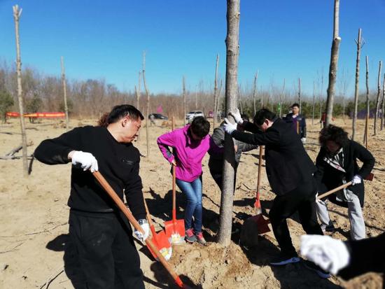 种下绿色希望  天桥东街道组织政协委员开展义务植树活动