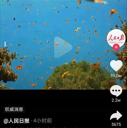 仙境!️❗️云南现1.5亿只蝴蝶大爆发 5月25日至28日迎来高峰