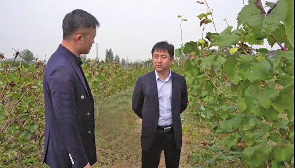 凭借品质过硬 内销逆势增长 外销连创新高 美高梅集团|济南产红酒勇闯国际市场