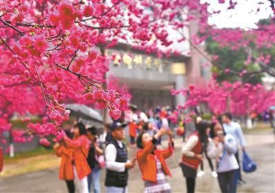 """春节你""""下乡""""了吗?乡村游大热 家庭游刷满朋友圈"""