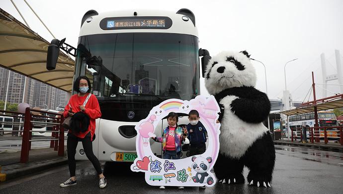 一道美丽的风景线!上海熊猫公交车上路