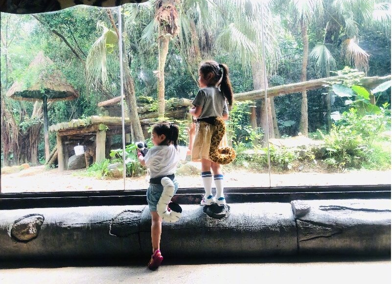 董璇携女儿游动物园,3岁的小酒窝造型百变,拍美照似小模特
