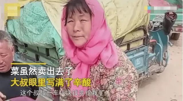 农民夫妻1300斤菠菜只卖了15元 发生了什么?