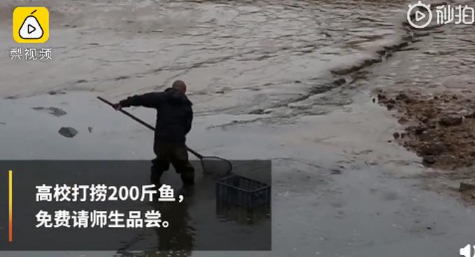 大学捞200斤鱼请师生免费吃,学生:鱼不够,把鸭子也捞了吧