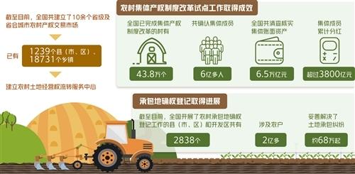 农村产权交易人气旺活力足