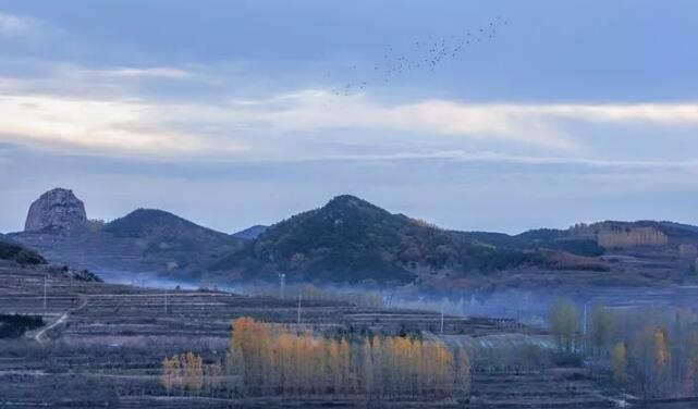 这就是山东丨初冬的日照,竟然也美得不像话……