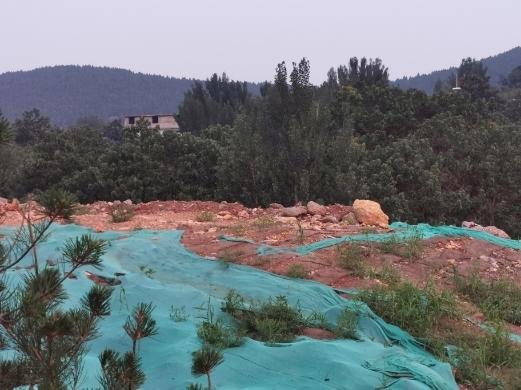 【啄木鸟在行动】历城区凤凰路隧道南口附近大片渣土堆积