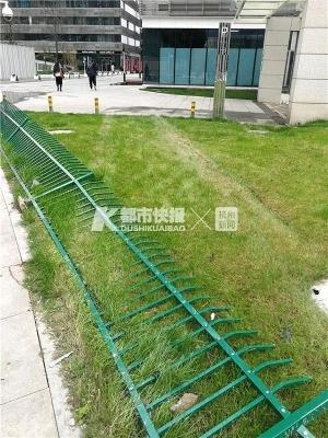 杭州一辆宝马车上三个男人,其中两个喝了酒!失控的车子谁开的?