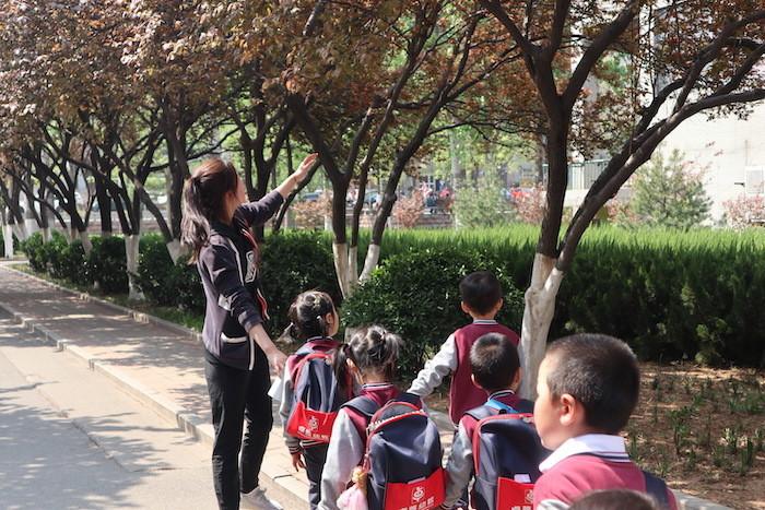济南卓雅幼儿园春游活动:闲步大黉舍园 咏诵多彩春天