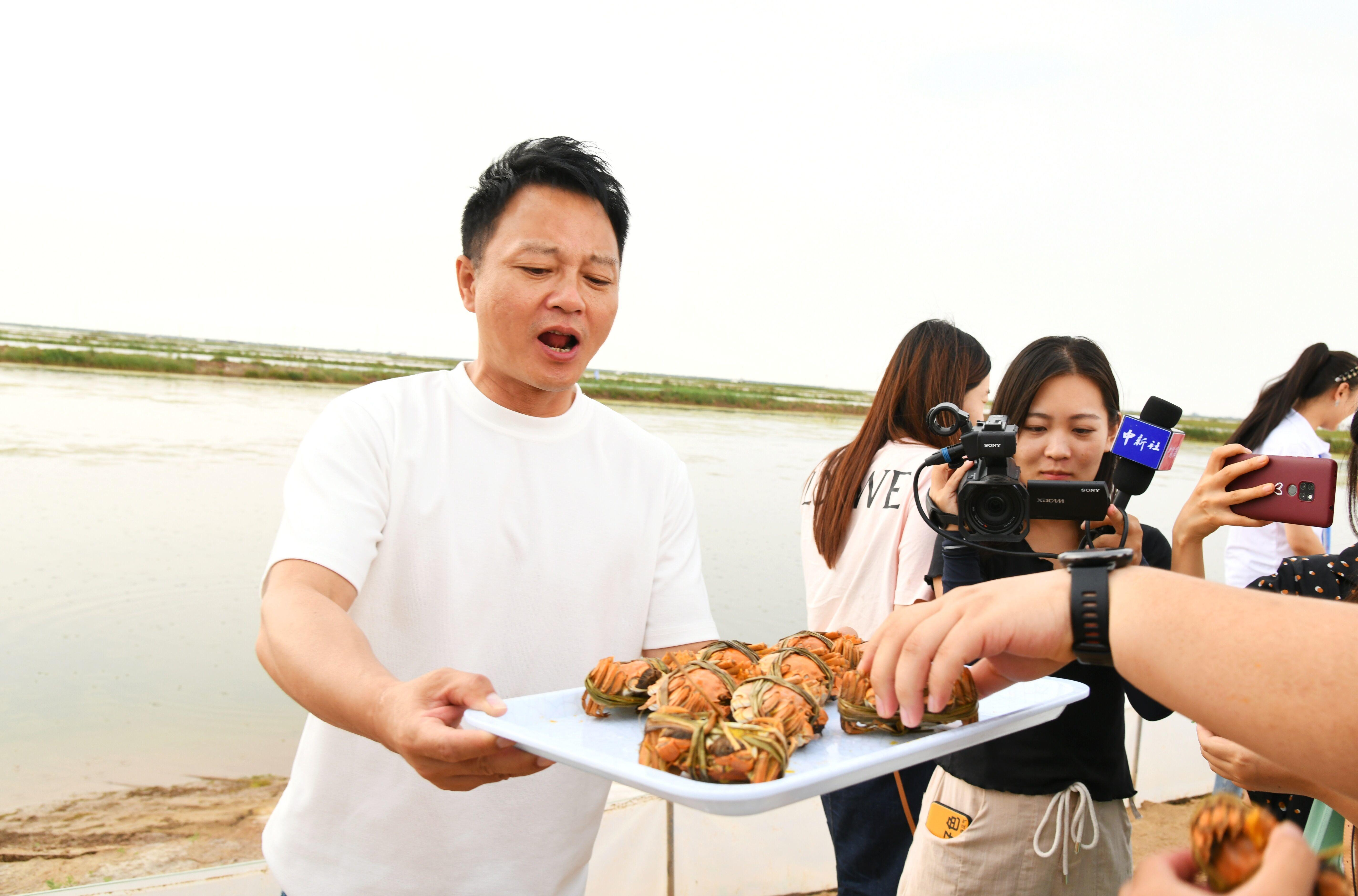 黄河口大闸蟹正式开捕,提前15至30天抢占市场先机