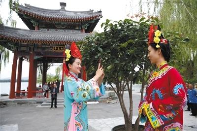 北京菊花文化节6大展区待赏花人