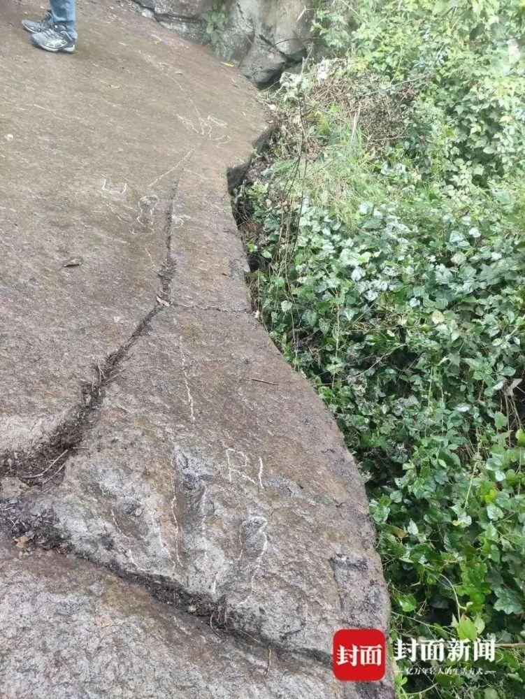 距今约1.3亿年!四川一5岁小男孩发现恐龙足迹,专家判断为白垩纪早期恐龙