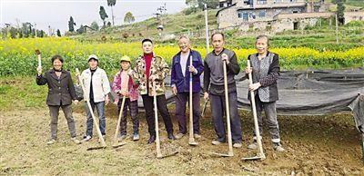 重庆南川:独臂青年成英豪 400亩荒山变青山