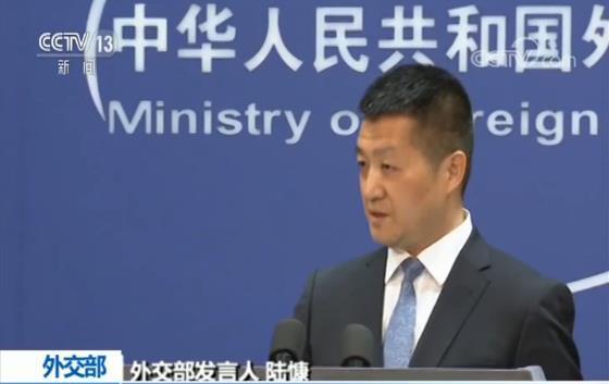 中国依法停止进口加拿大油菜籽遭质疑 外交部回应