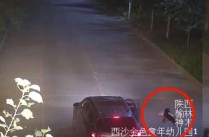 太惨了!陕西一高中生凌晨醉躺路