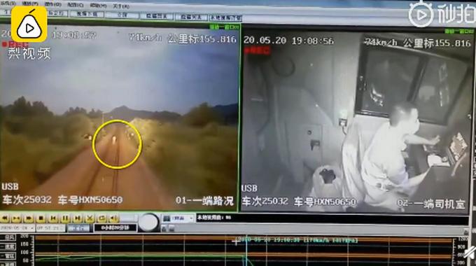 男子铁轨上拍警示视频被撞身亡 因事发前看到一只被轧死的狗