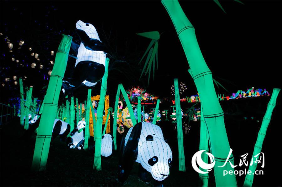 """东京德国村""""中国彩灯节""""感受浓浓中国味"""