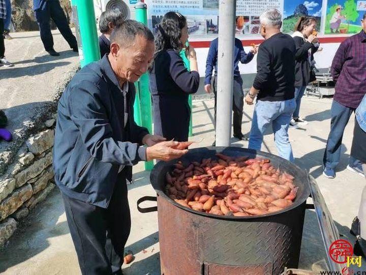南山山村办起蜜薯丰收节,村民增收又致富