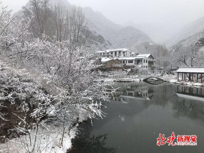 北京多地下雪,门头沟部分树木被雪覆盖,最高气温仅9℃
