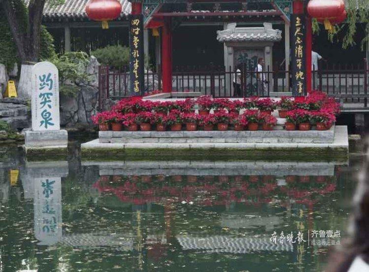 最新!济南趵突泉水位一天波动20厘米