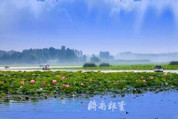 济南白云湖湿地亮相央视《共和国...