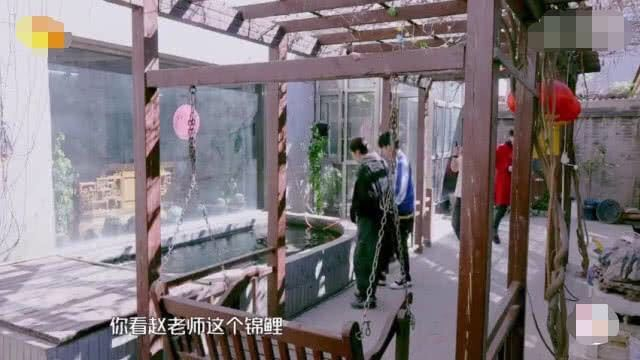 赵忠祥豪宅曝光,满屋字画古董鱼池堪比泳池,客厅牌匾上的5个字亮了