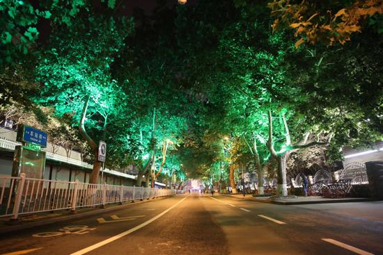 """纬北路街道:""""水陆空""""三维治理提升  打造绿动、心动""""品质生活圈"""""""
