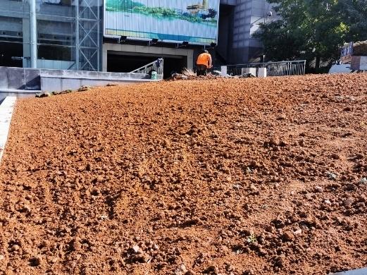 【啄木鸟在行动】舜耕山庄内绿化带施工渣土裸露