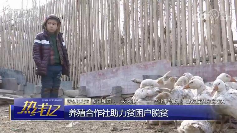 """新疆和田:""""拔穷根""""——产业带动就业 激发脱贫内生动力"""