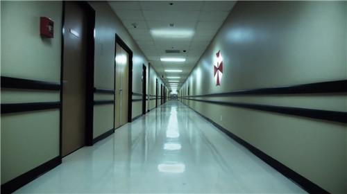 外媒爆料《生化危机8》最新消息 或将于2年后发售