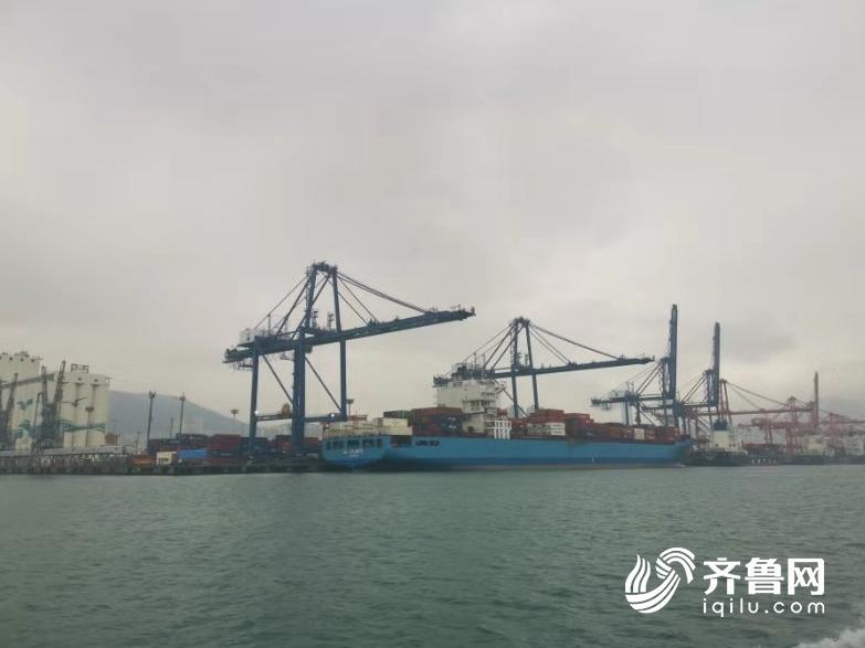 寻求合作新机遇!山东省代表团赴韩国釜山港考察