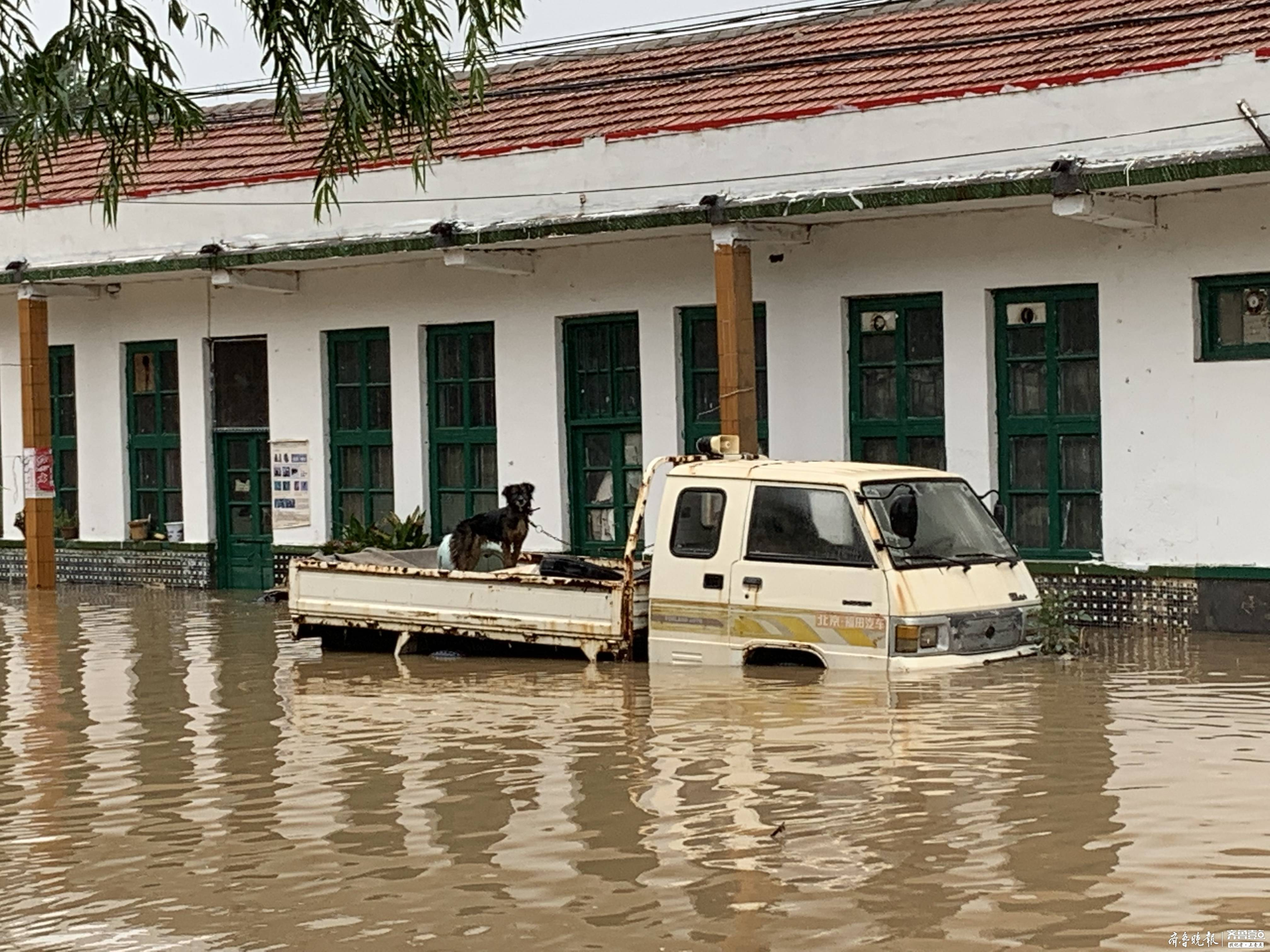 记者实地探访寿光营里镇:积水逐渐退去,有村民开始回家整理物品