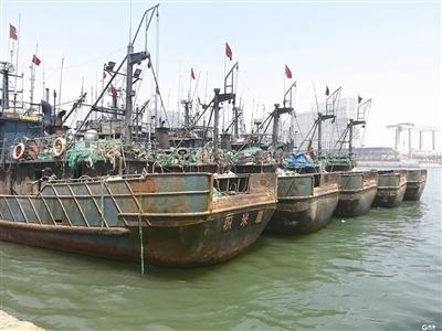 """青岛4个月""""更严""""休渔期""""五一""""开启 5月1日12时前休渔船全部回港"""