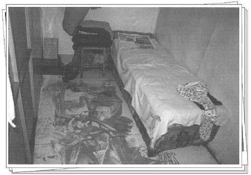 女子深夜被害11年后真凶落网 男性家族排查分析系统立功
